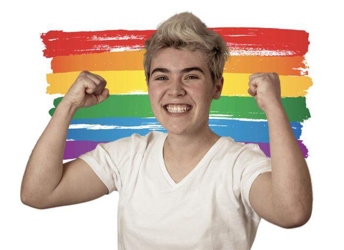In Illinois, State-Mandated LGBTQ History for Students Becomes a Reality