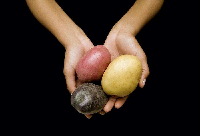 All Potatoes Are Not Created Equal
