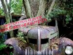 Old Car City: The Fine Art of Dilapidation